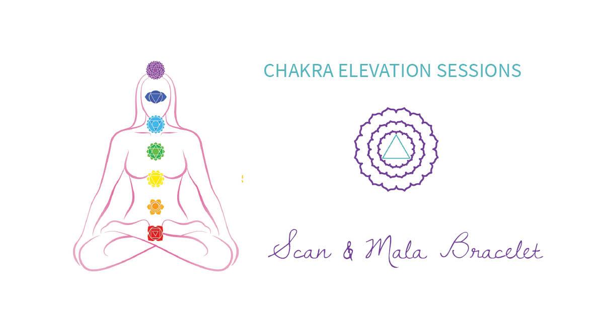 Bonita Springs_Chakra Elevation Sessions.jpg