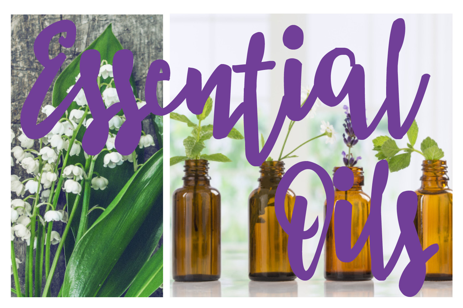 essential oils - why to use essential oils - bonita springs essential oils - naples florida essential oils - natural health solutions. natural health remedies.jpg