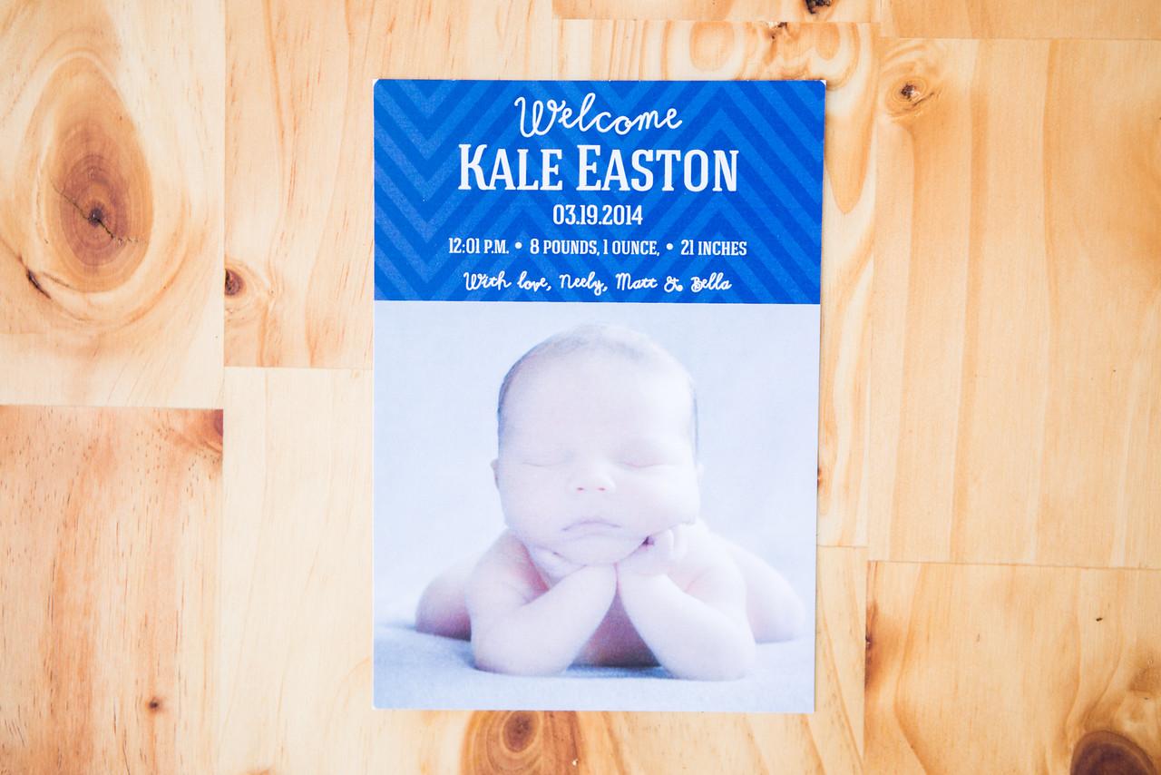 Birth Announcement   Digital Download   $15