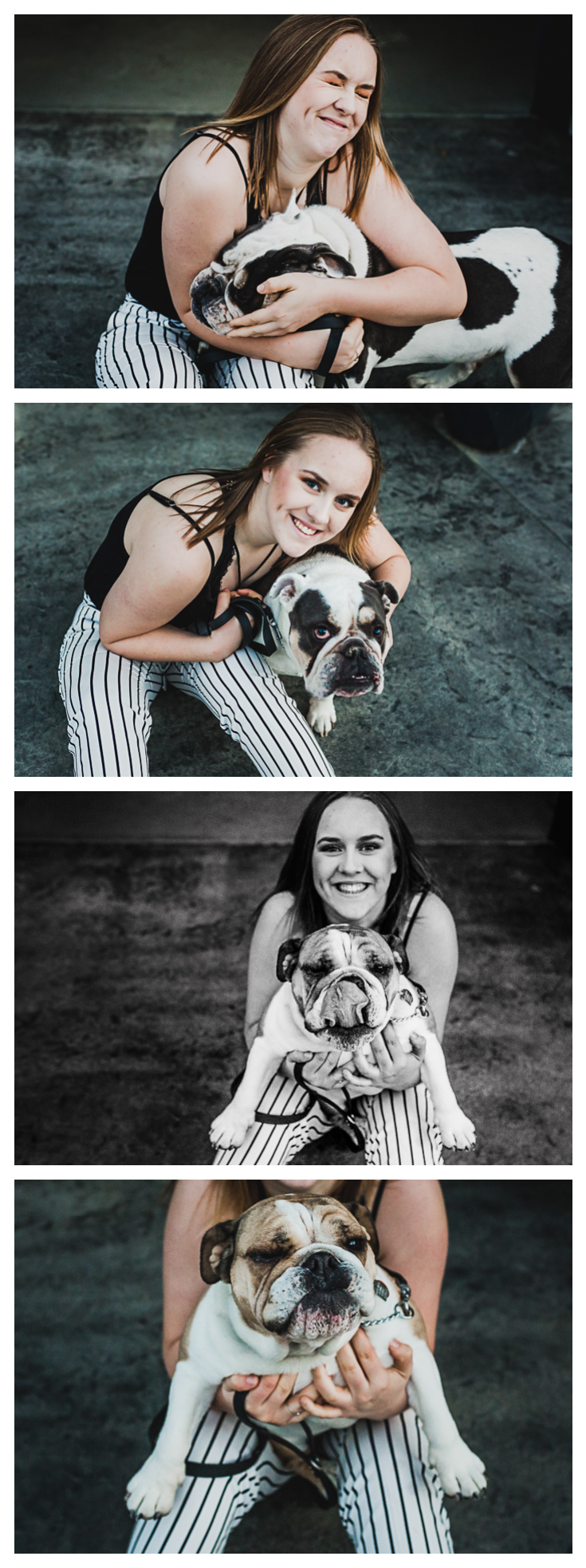 Teen girl portraits with her bulldogs after her portrait session.