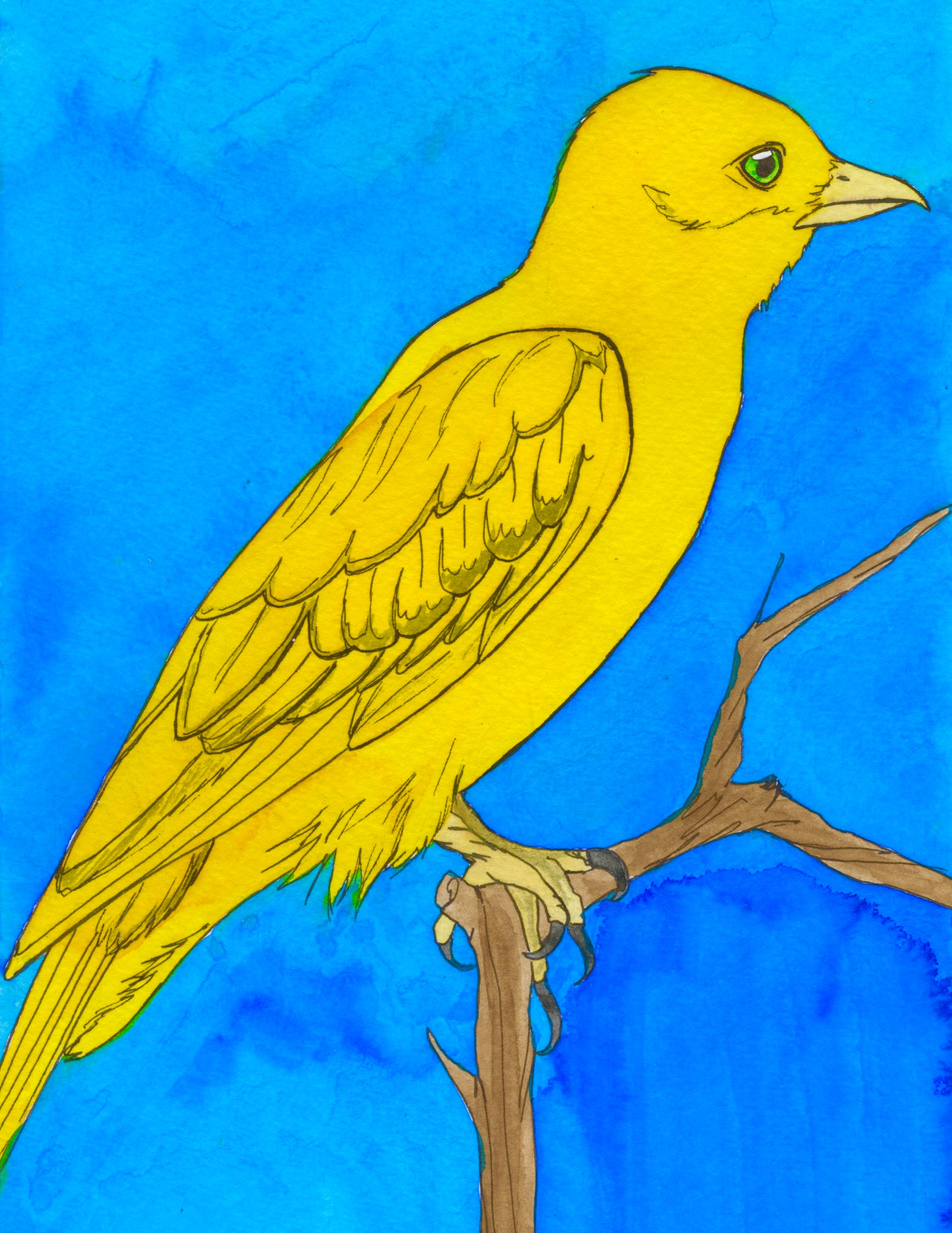 El Pajaro, from LOTERIA series