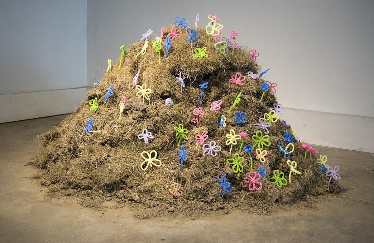 Flower Mound - 2017