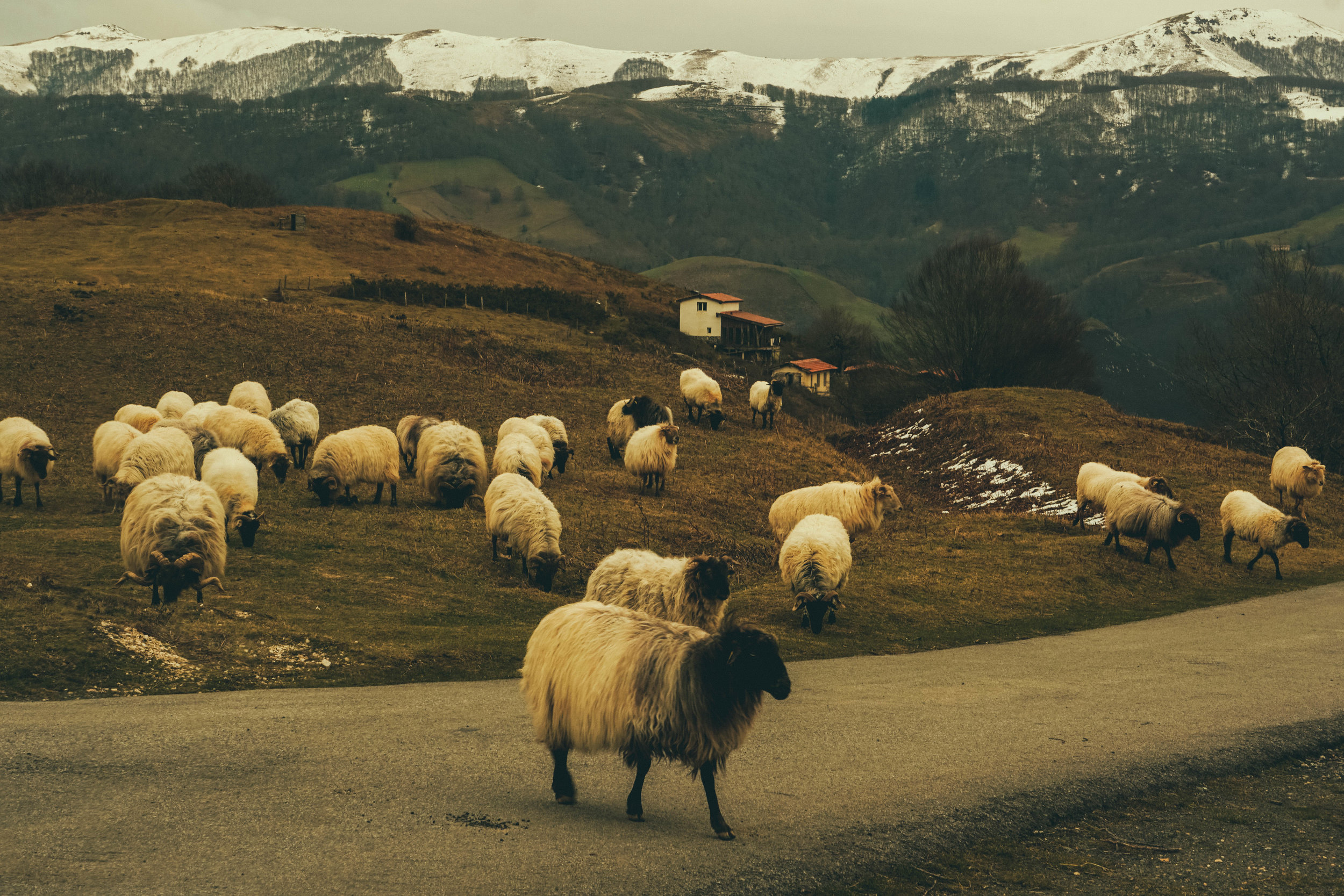 Basque Country traffic jam!