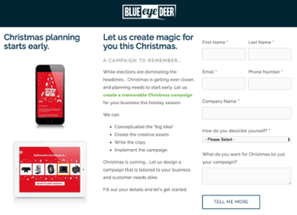 Christmas Campaign Landing Page.png