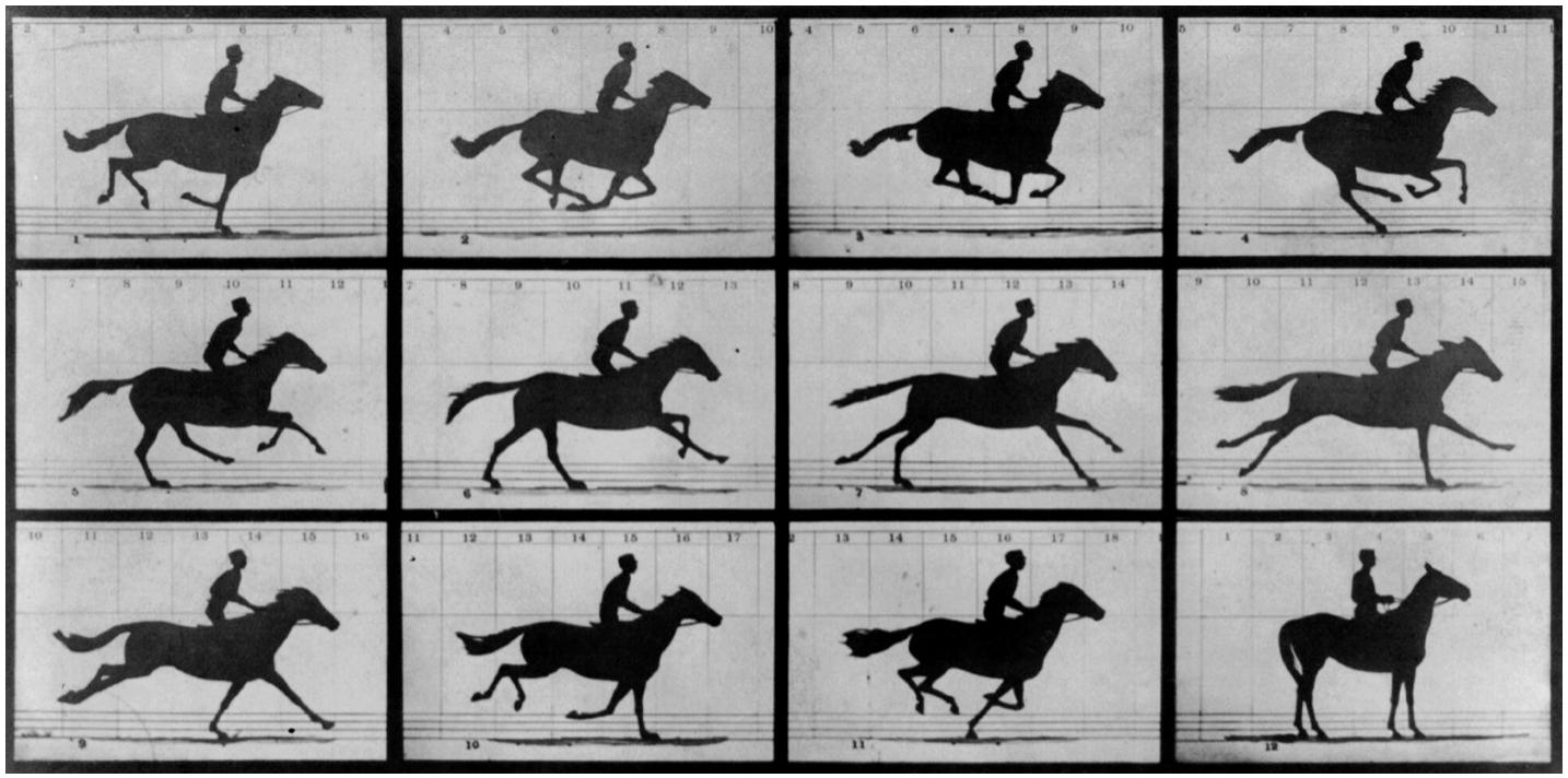 "Eadweard Muybridge's seminal work ""Animal Locomotion"", 1887"