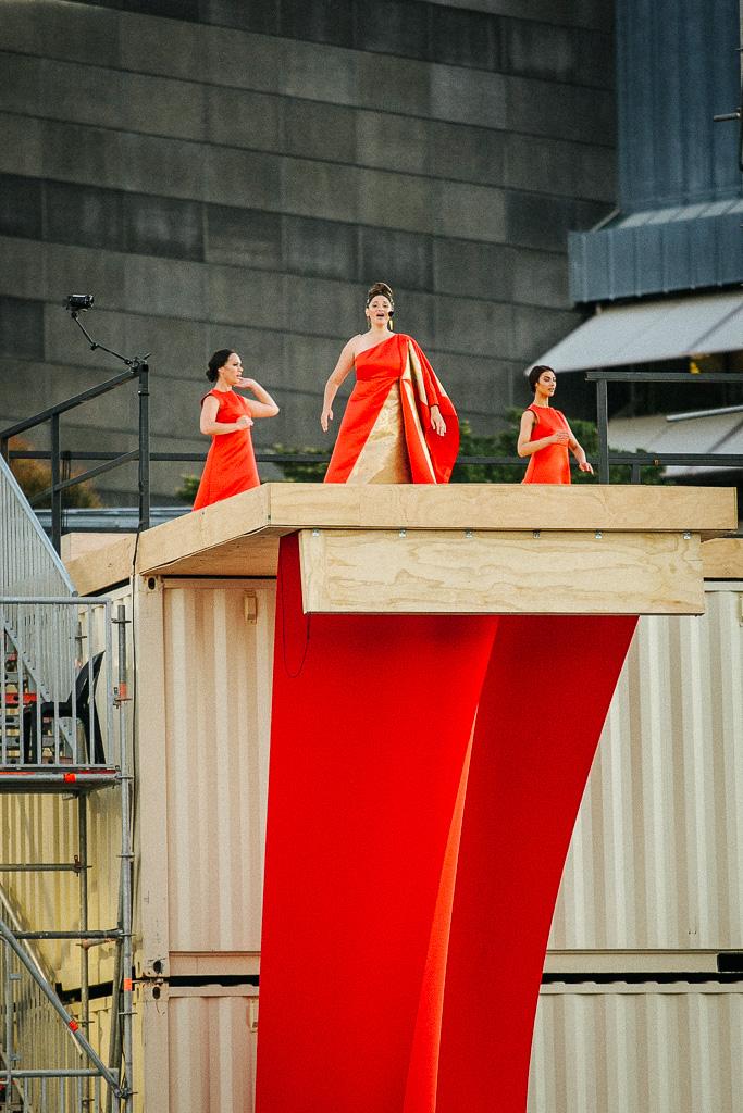 A Waka Odyssey New Zealand Festival Te Rawhitiroa Bosch (3).jpg