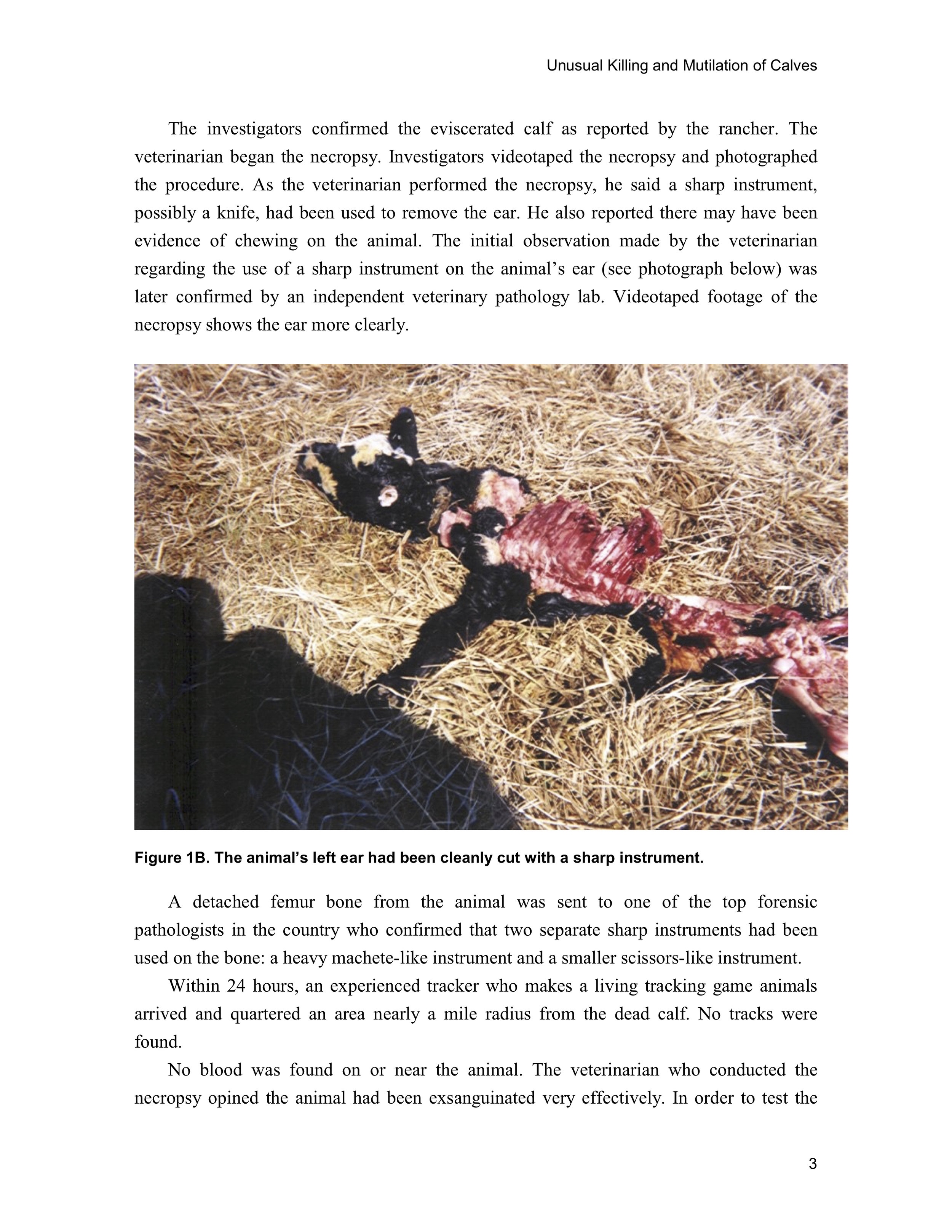 1997 ANIMAL MUTILATION REPORT 2.jpg