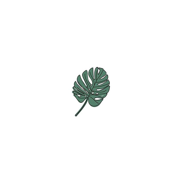 Just a little scribble inspired by my new monstera plant. She's a beauty! #monstera . . . . . #monsteradeliciosa #instaart #art #artist #icon #design #graphicdesign #leaf #monsteraleaf #botanical #botanicalart #plant #plants #plantbaby #graphicdesigner #illustrator #illustration #wacomtablet #wacomintuos #create #draw #lineart