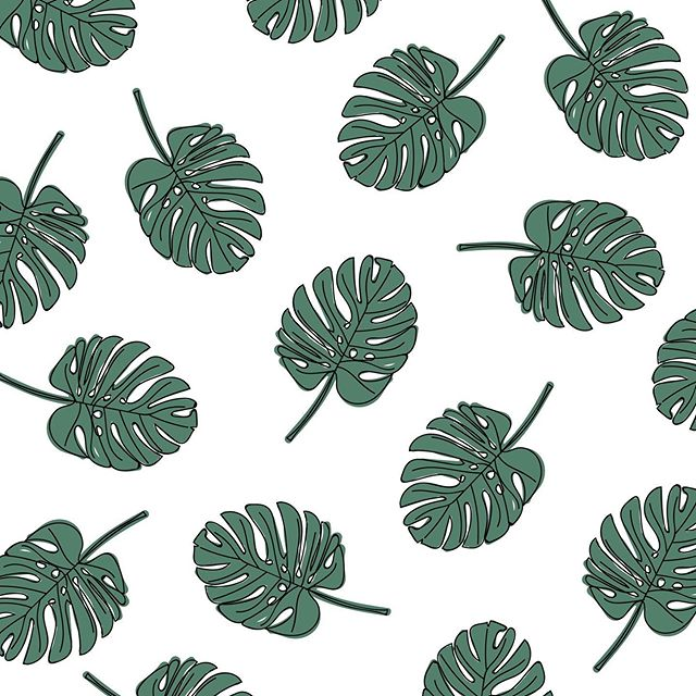 A little monstera pattern... maybe this should be the next free wallpaper download! Stay tuned ✌🏼 . . . . . #monstera #pattern #patterndesign #designer #design #wallpaper #wallpaperdesign #illustrations #illustrate #ai #wacom #greenery #botanical #instaart #draw #create