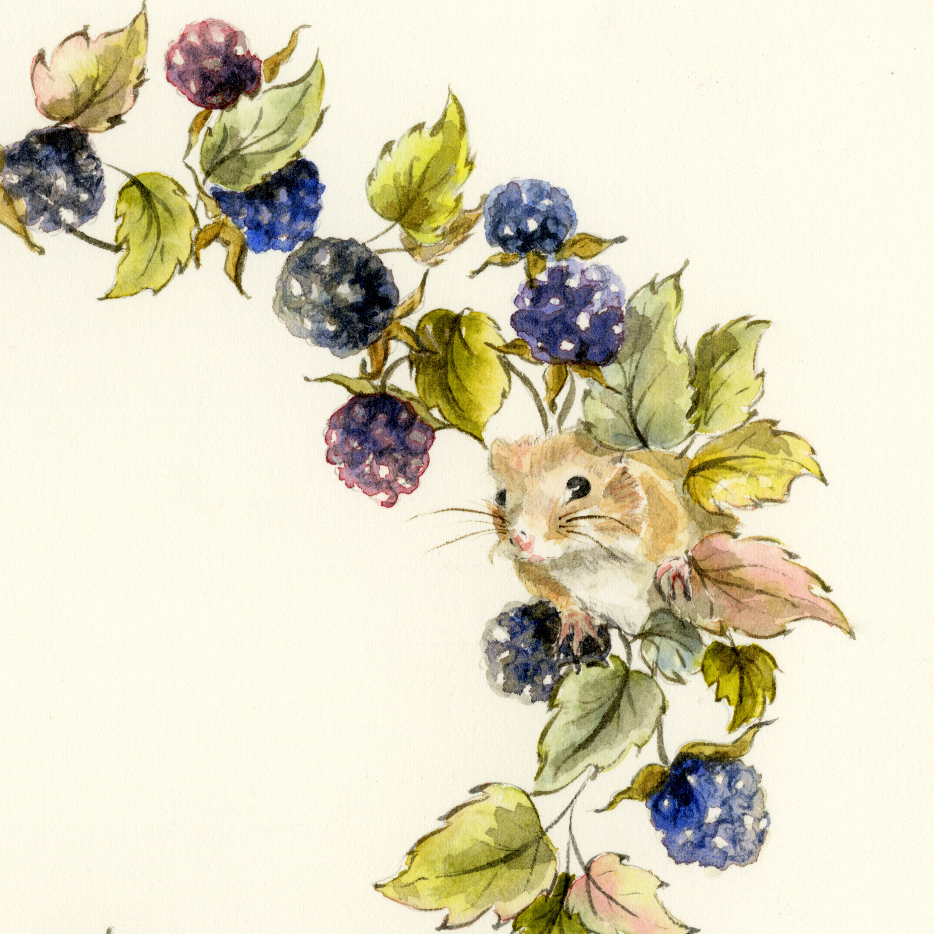 Blackberries and mice detail.jpg