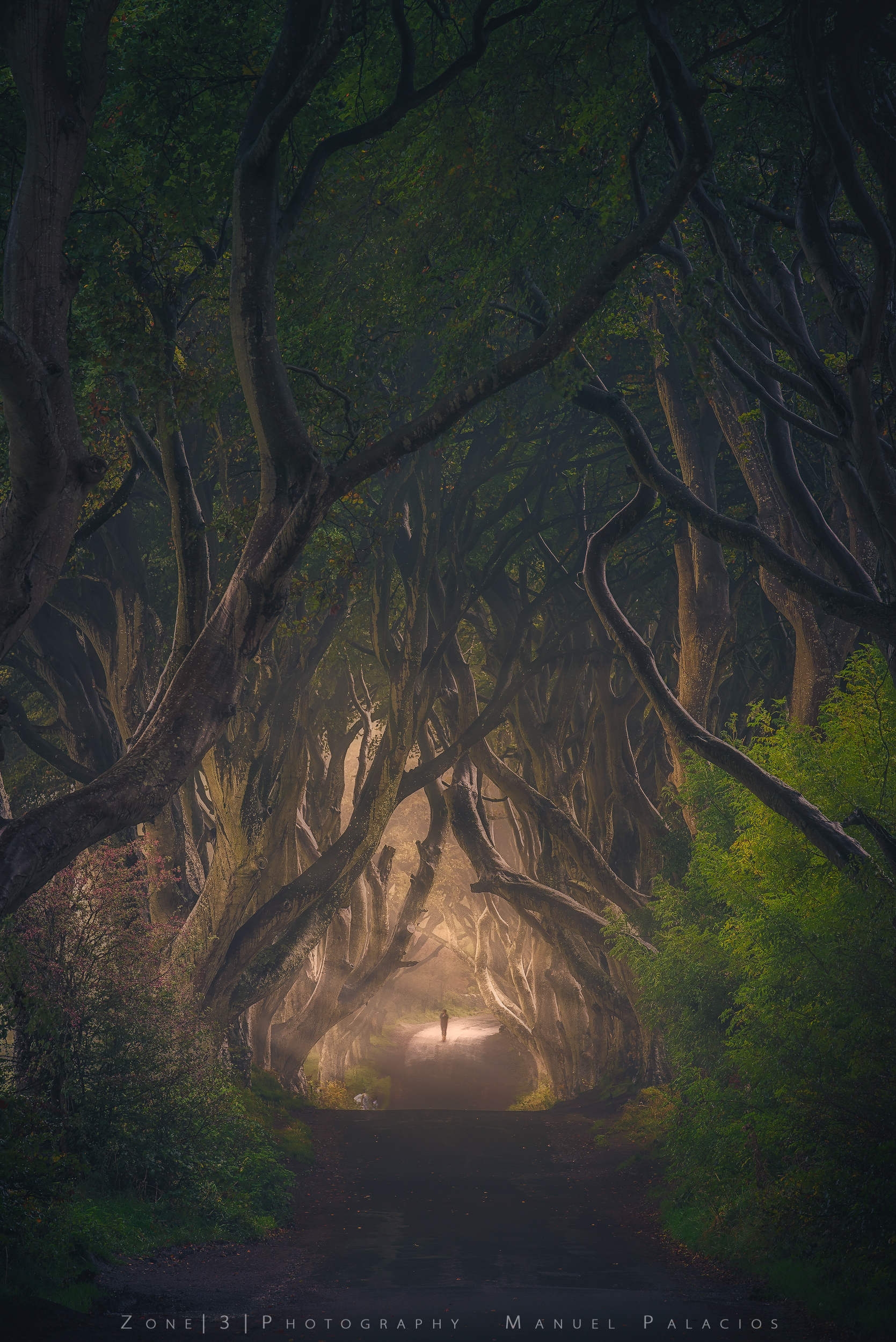 The King's Road, Northern Ireland.