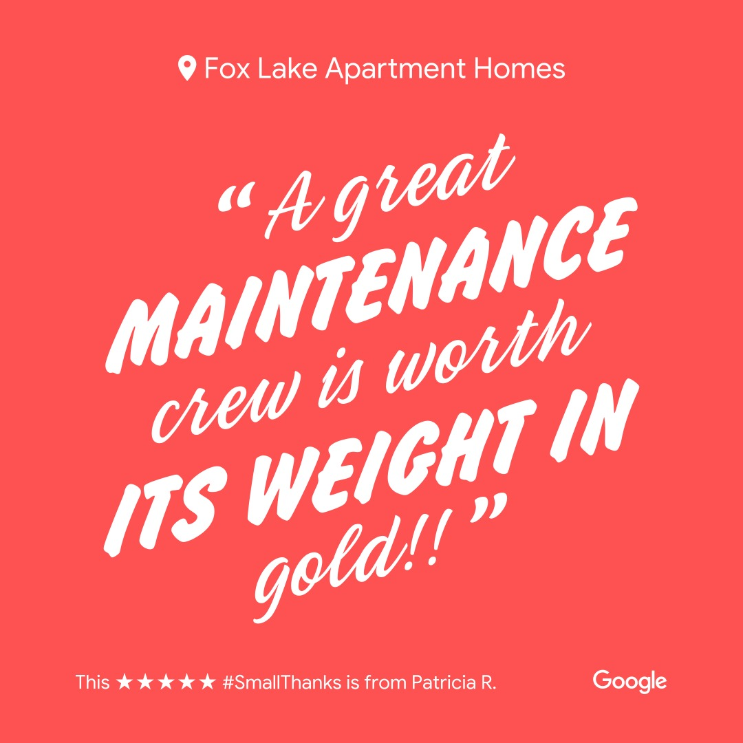Google 5 Star Review From Patricia R.