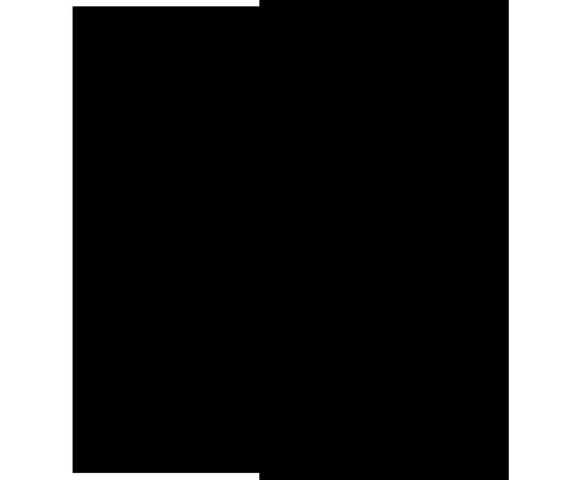 logo_black (2).png