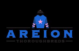 AreionThoroughbreds-Logo-Silks-WEB.png