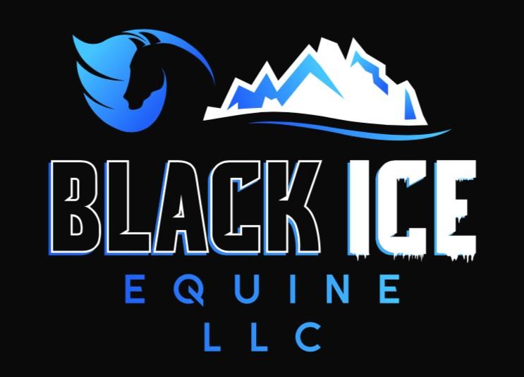 Black Ice LLC LogoGood.jpg