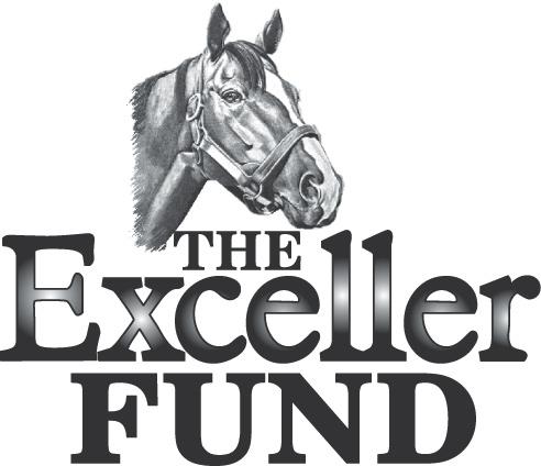 The Exceller Fund Logo.jpg