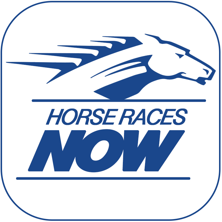 horse races now logo.png