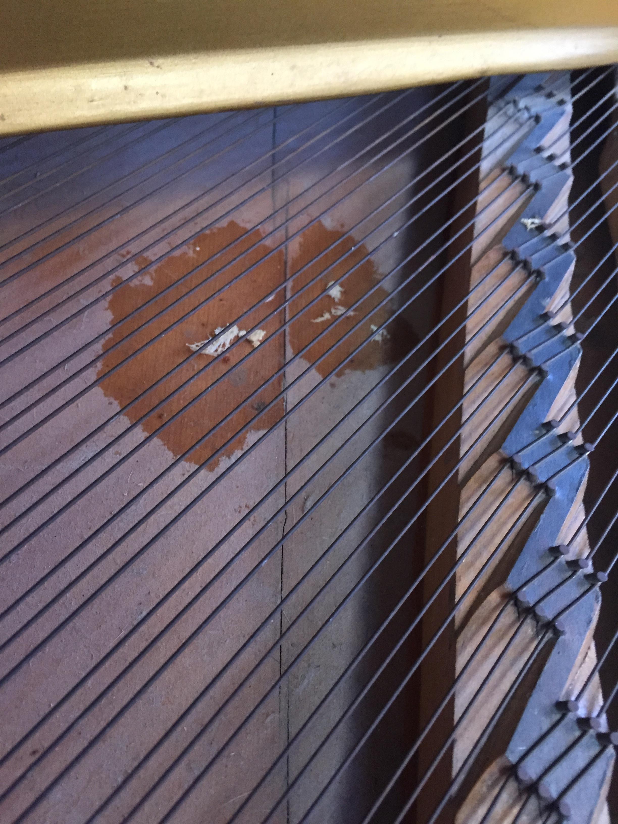 Badly split soundboard, corroded strings, broken bridges and ingrained dirt