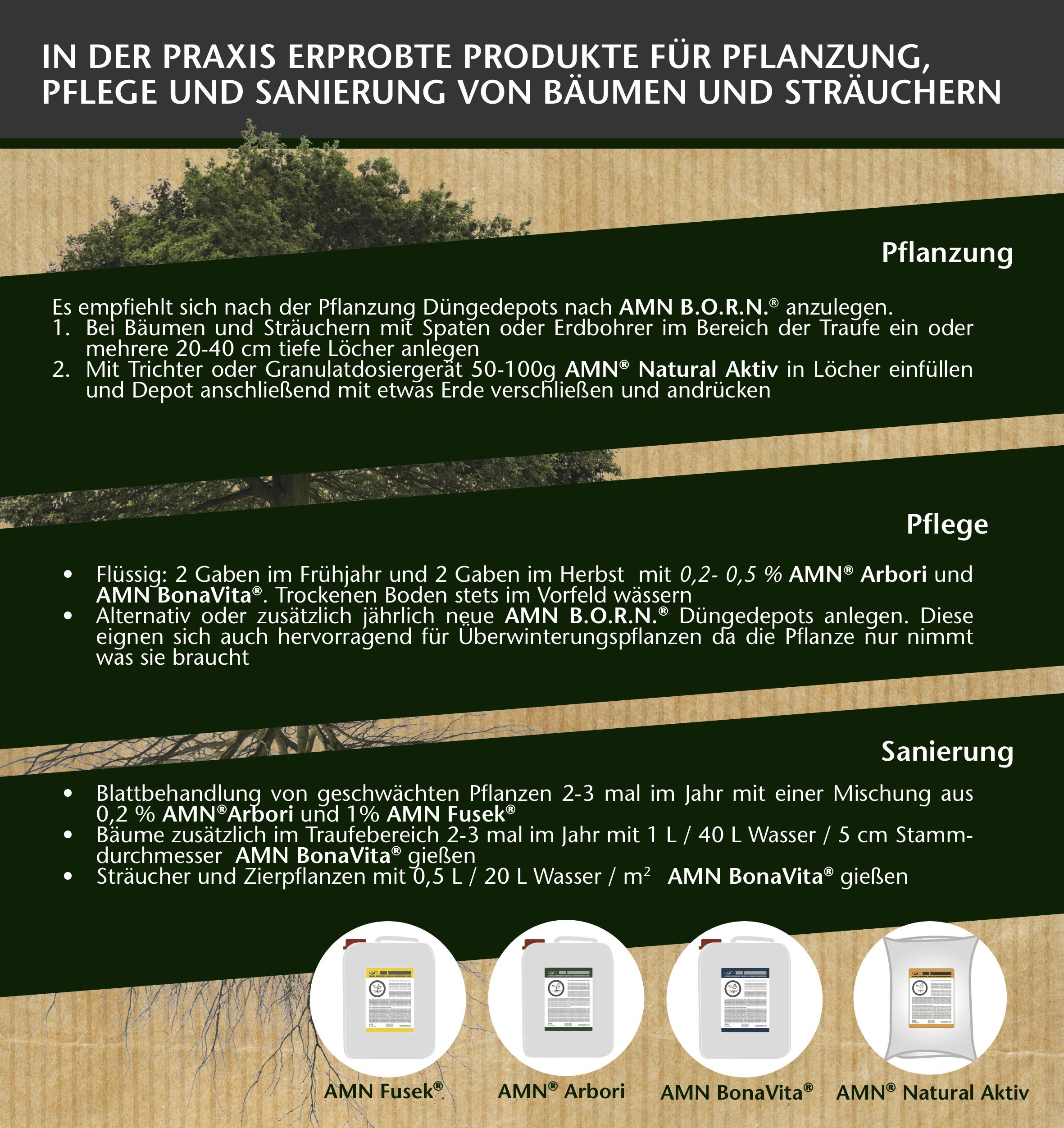 Flyer Baumpflege 2019_2.jpg