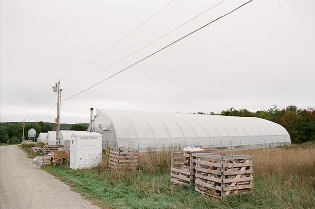 organic farm in northern maine - Sarah Der Photography
