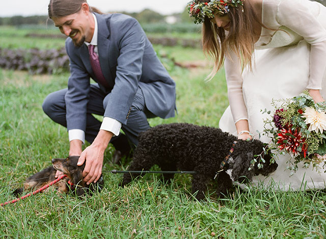 couple includes their dogs at their wedding ceremony - Sarah Der Photography