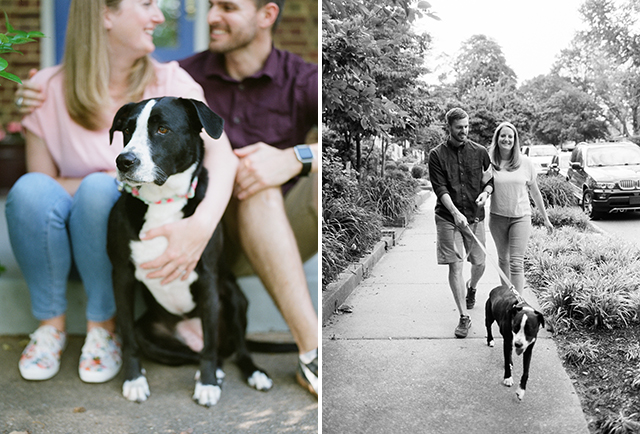 Including your dog at your portrait session, walking and lifestyle shot - Sarah Der Photography