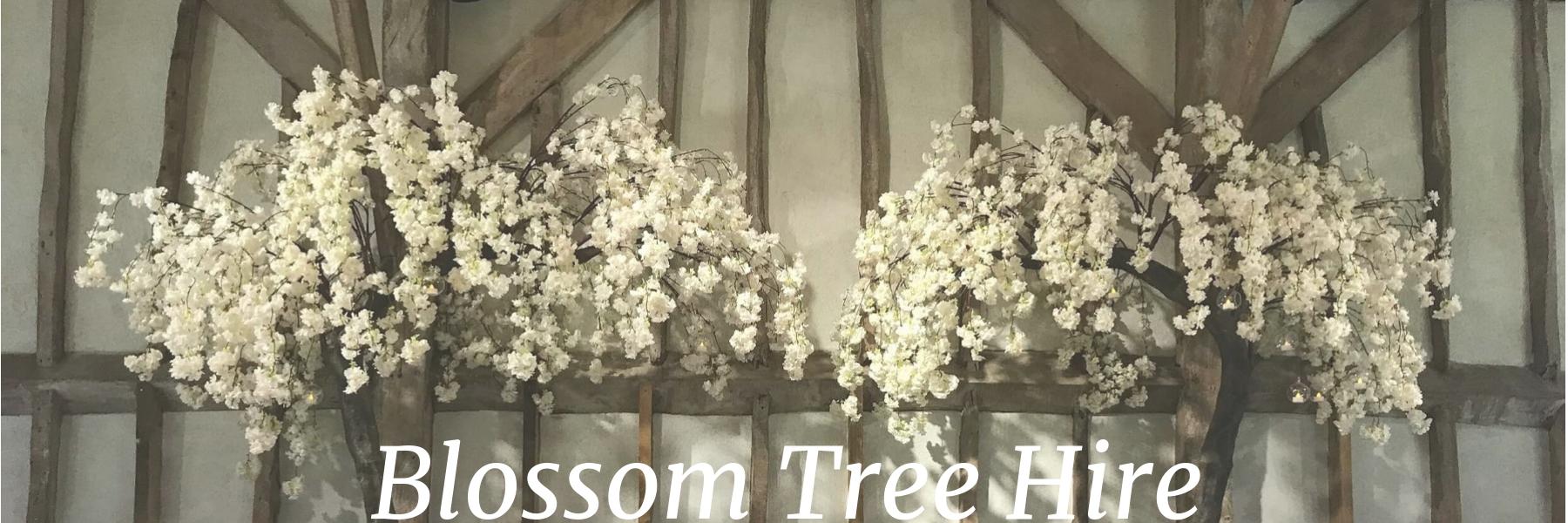Blossom Tree Hire.jpg