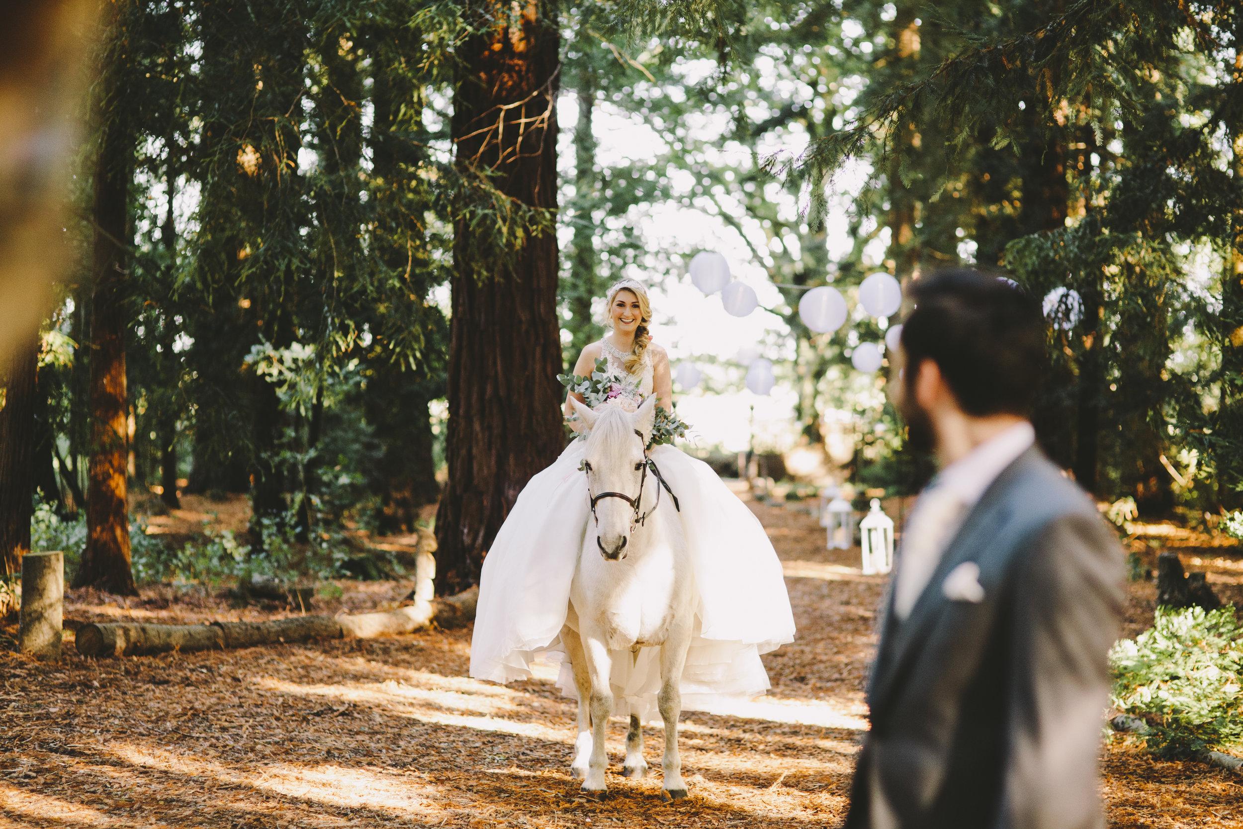 Two-Woods-Estate-wedding-110.jpg
