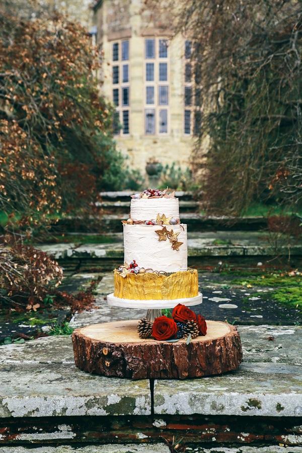 cake outside.jpg