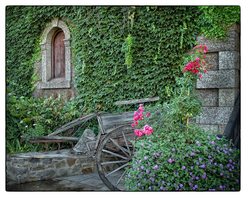 Old Winery Wagon web.jpg
