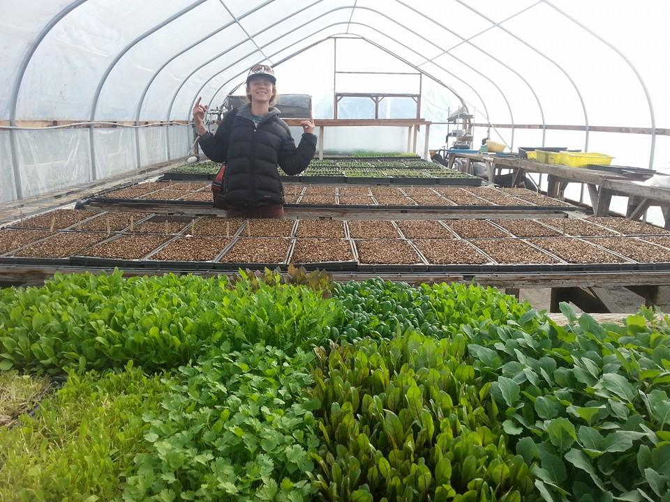 Lots of planting ahead!