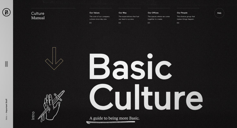 BASIC-Culture-Manual.png