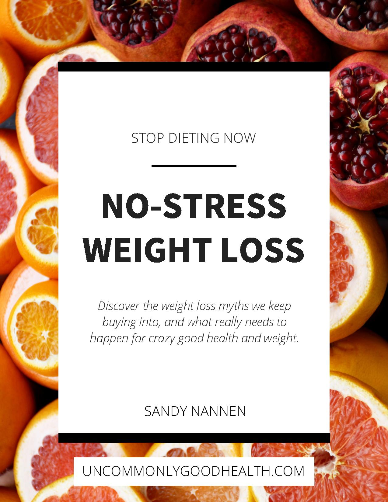 1_Covers_ No-Stress Weight Loss by Sandy Nannen (dragged)-page-001.jpg