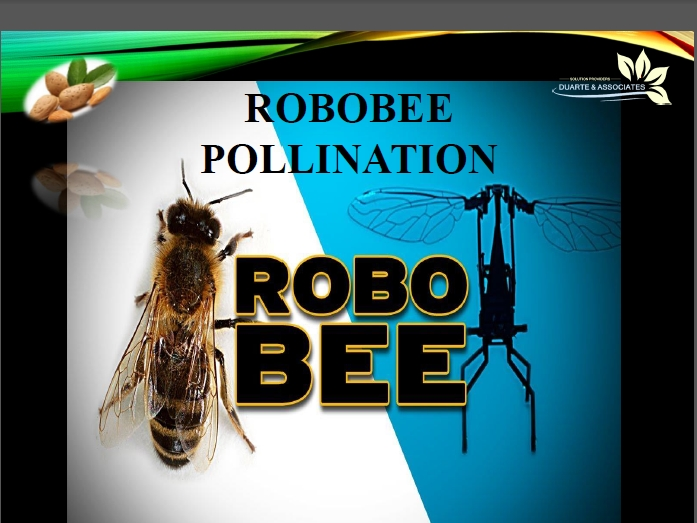 Robobee Pollination System