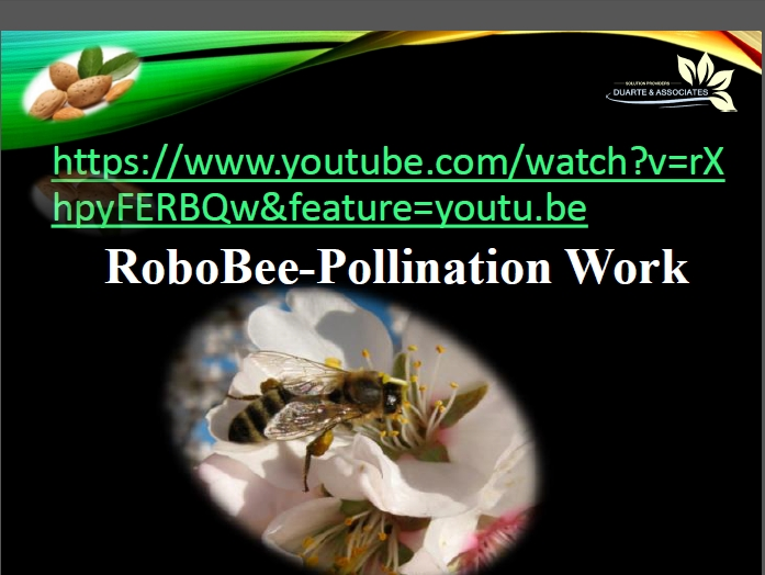 Robobee-Pollenation System Video