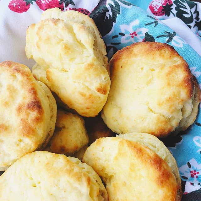 Biscuits over boys ❤️ Love these biscuits with any summer meal!  Recipe to follow soon... . . . . . #biscuitsoverboys #glutenfreerecipes #celiaclife #foodstagram #chicagofood #homemade #whatsbreadgottodowithit