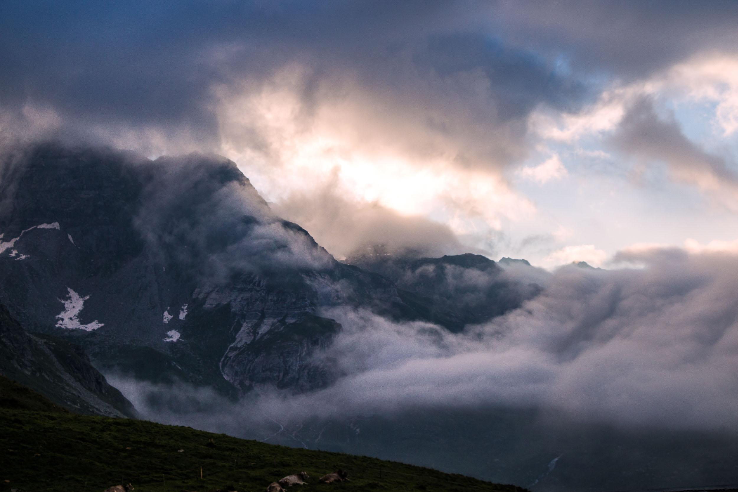 20130811_03516 Auf der Alp.jpg