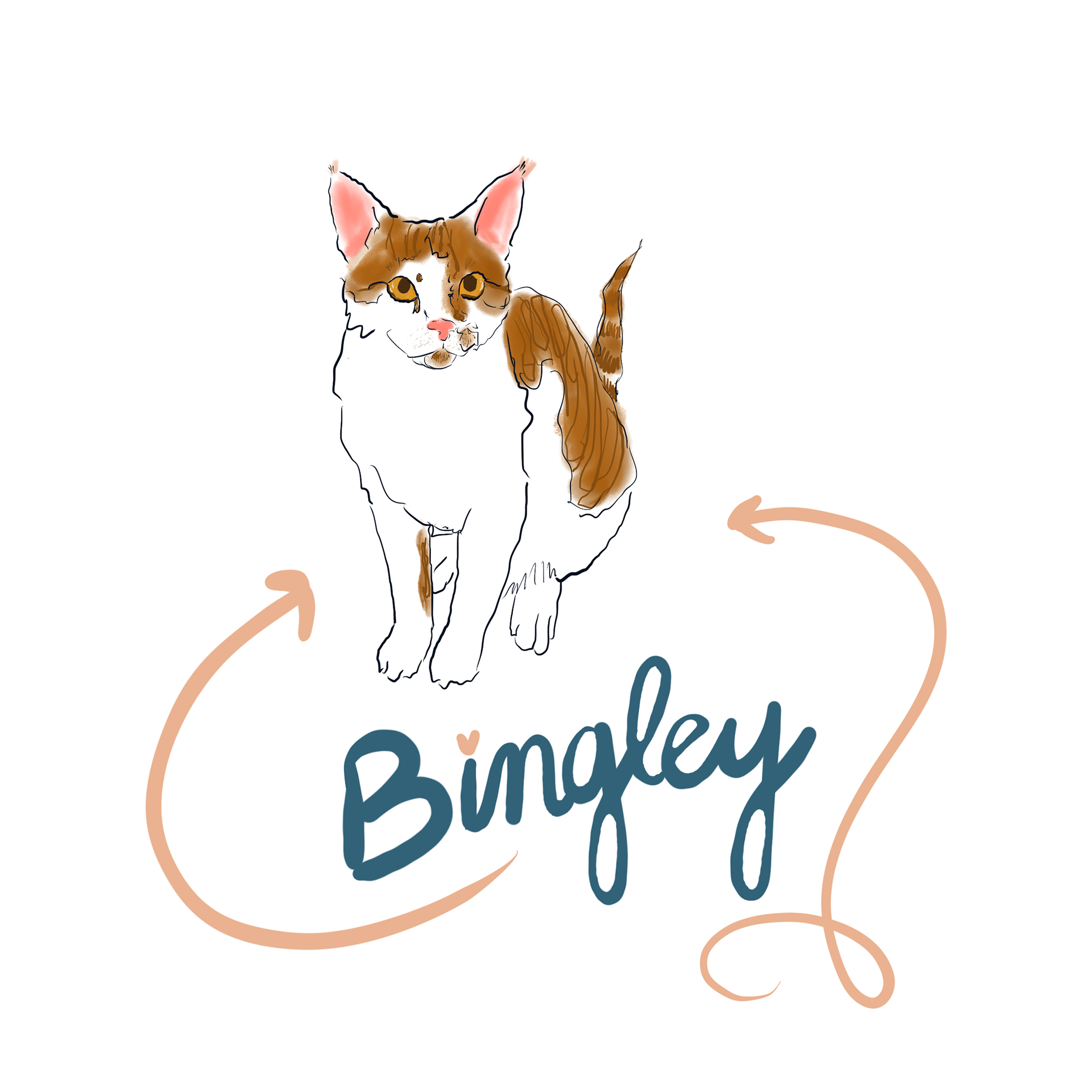Bingley is 9 months old.