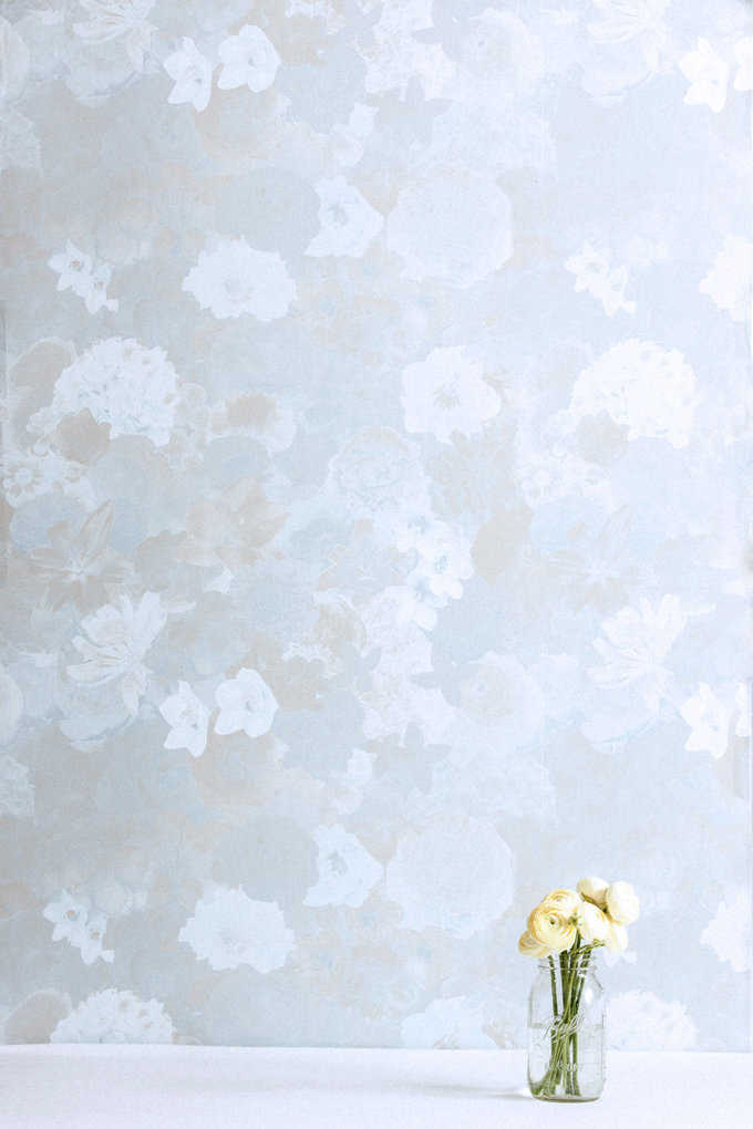 hydrangea-sml.jpg