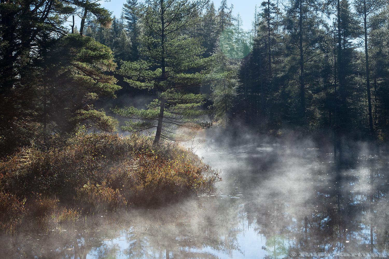 Misty inlet near Franklin Falls.