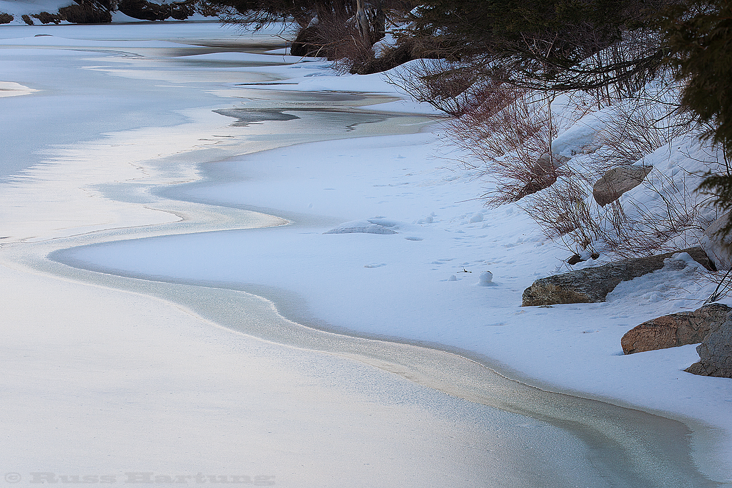 The golden light of early morning reflects a frozen stream glow.