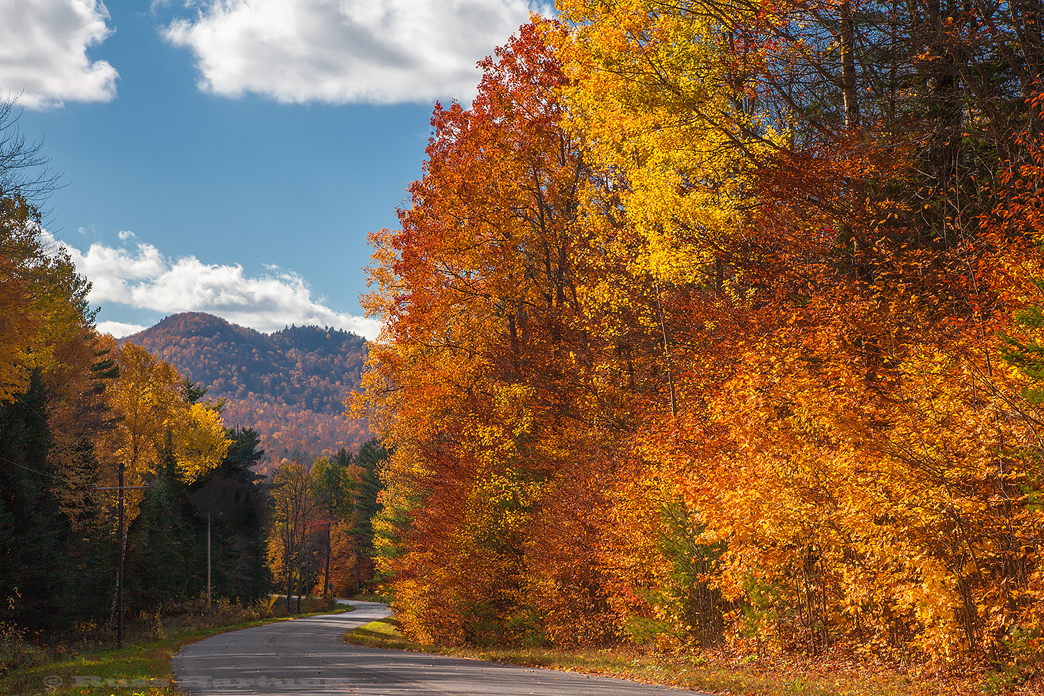 A winding backroad during peak foliage season.
