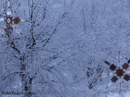 snowflakes winter trees 2.jpg