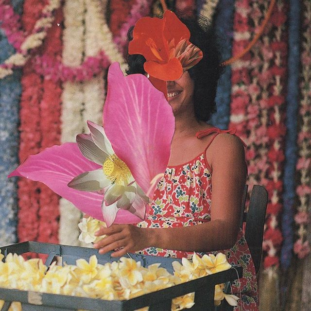 WE ARE ALL PART FLOWER  #analogcollage #maui #hawaii