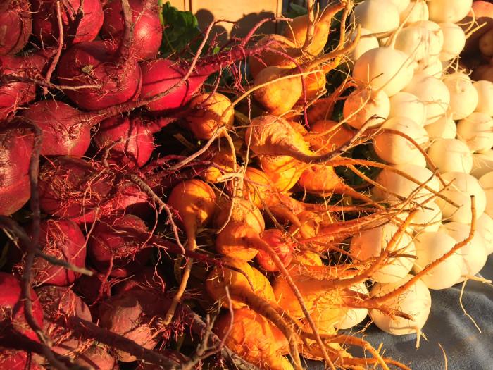 Fall Veg Roots.jpg