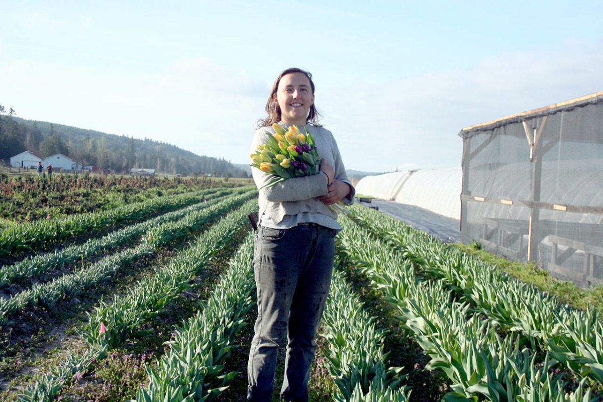 Peninsula Daily News, Julia Callahan holds a bouquet of tulips produced at Red Dog Farm in Chimacum. About 30,000 bulbs were planted at the farm last October and will be available throughout the year both at the farm, 406 Center Road, and at the Port Townsend Farmers Market, which opens at 9 a.m. Saturday in Uptown on Tyler Street. (Brian McLean/Peninsula Daily News), By  Brian McLean , Friday, April 5, 2019 10:24am
