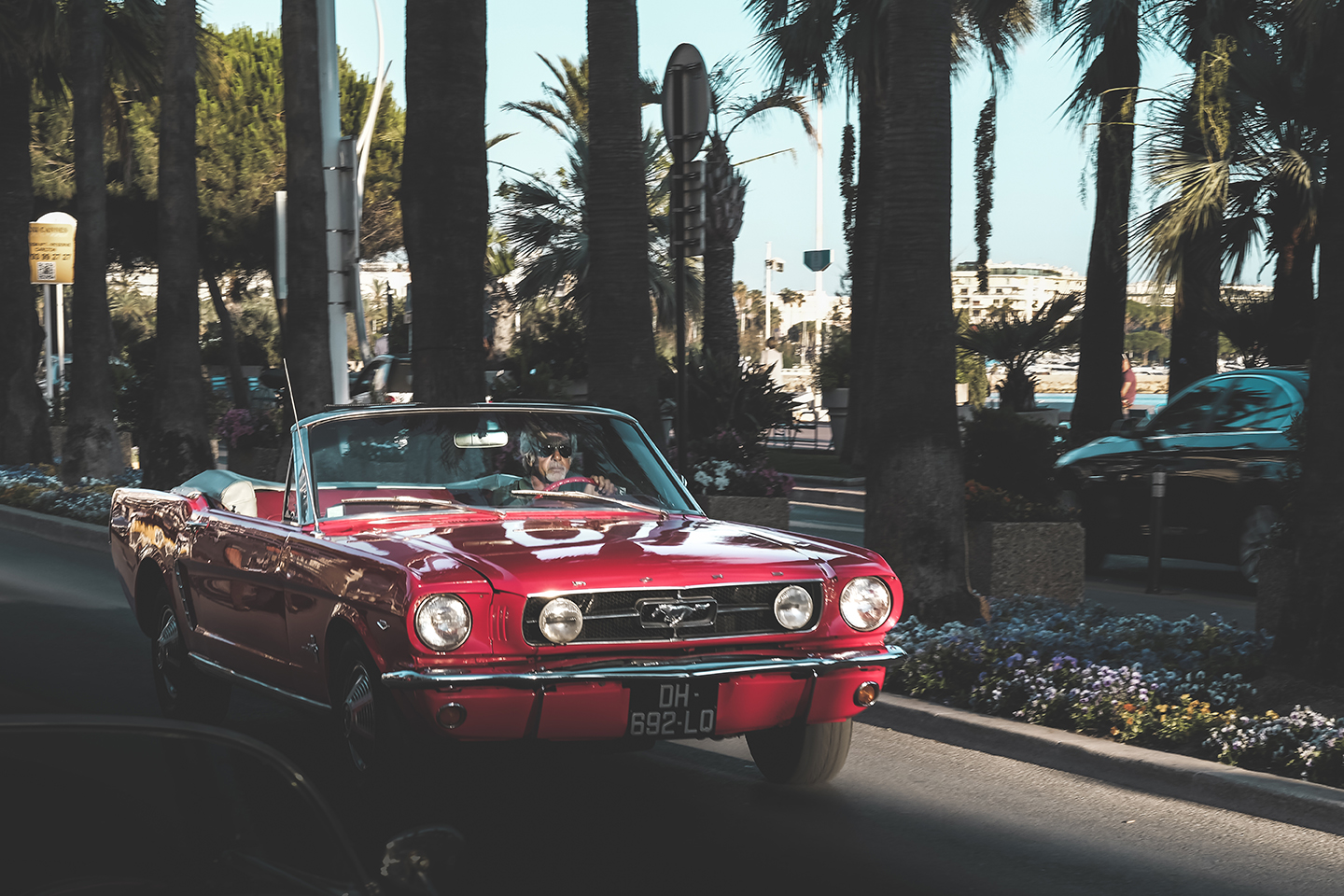 Cannes - stang full 2.jpg