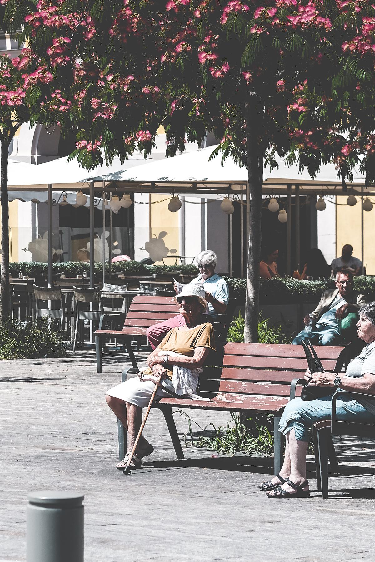 Nice - Oldie square.jpg