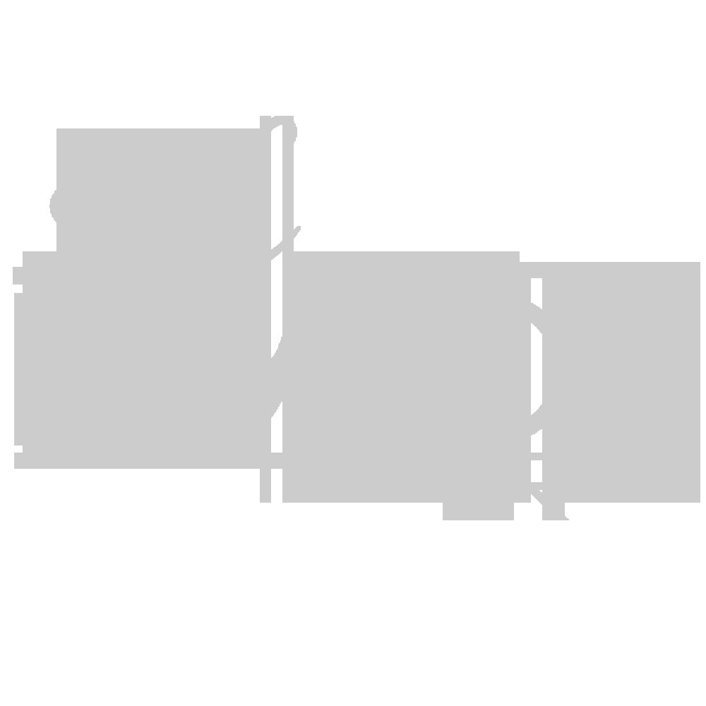 Randy C Bonds.png