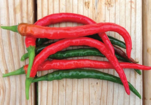 Pepper Hot Cayenne Long Thin
